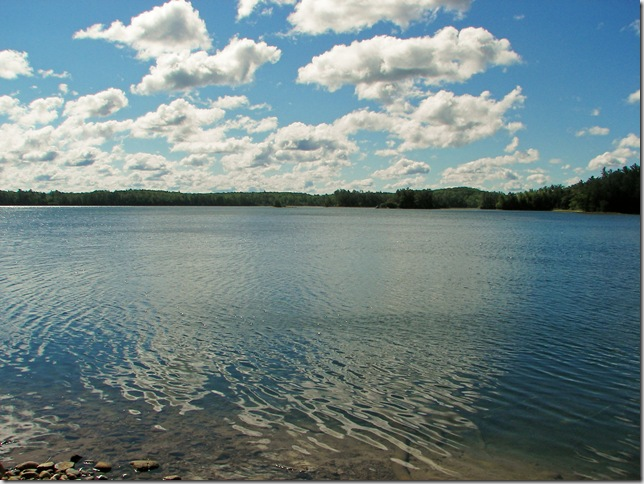 Clear Lake The Trail