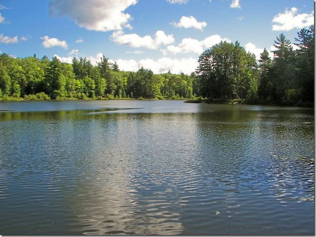 Shannon Lake 1