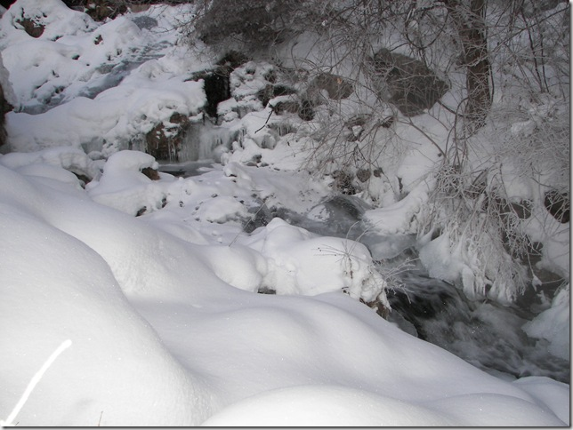 Winter 020